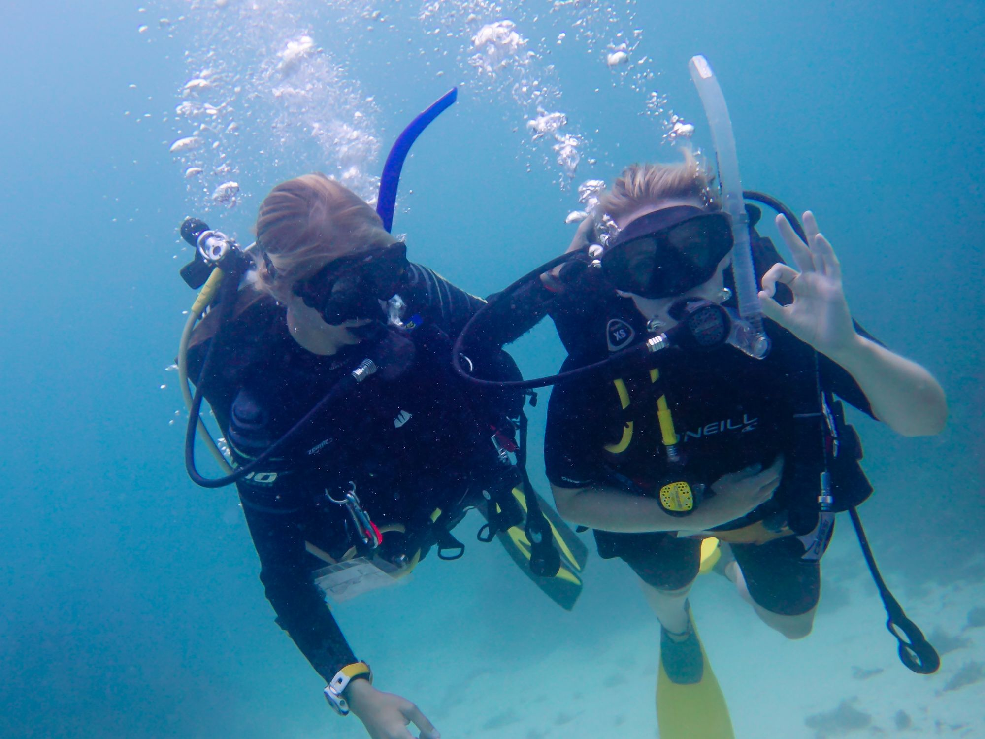 Padi courses learn to dive at dive carriacou discover scuba diving carriacou grenada details price availability fandeluxe Choice Image