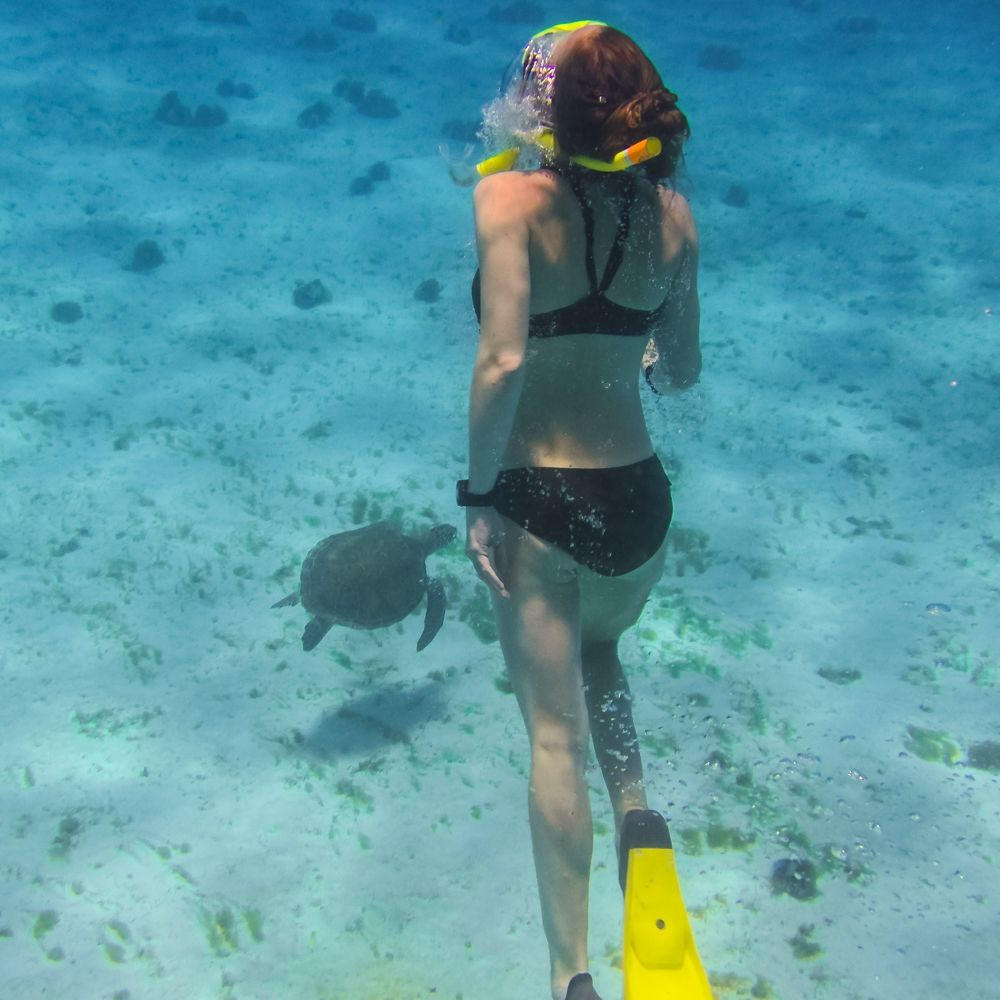 Dive Carriacou Grenada Snorkel Set Rental